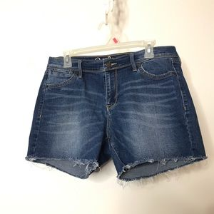 Old Navy The Sweetheart Denim Cut Off Shorts 10